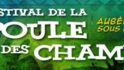 POULE-DES-CHAMPS-2012
